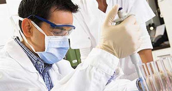 Как сделать генетическую экспертизу